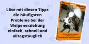 Das total ANDERE Welpenbuch – Claudia Hußmann